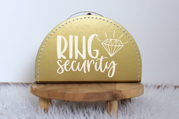 Ring Security 2